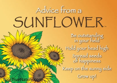 Advice from a Sunflower Jumbo Magnet