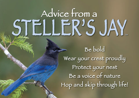 Advice from a Steller's Jay Jumbo Magnet