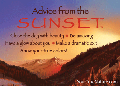 Advice from the Sunset Jumbo Magnet