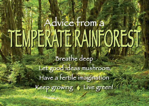 Advice from a Temperate Rainforest Jumbo Magnet