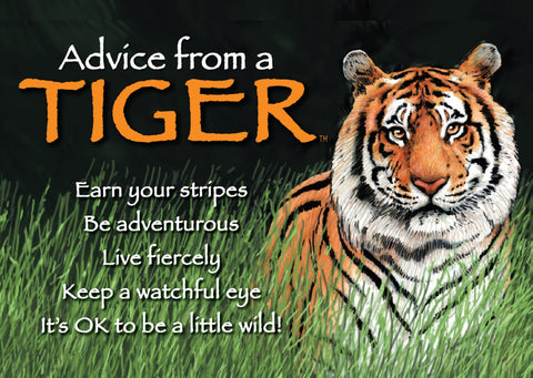 Advice from a Tiger Jumbo Magnet