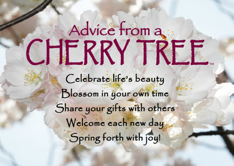 Advice from a Cherry Tree Jumbo Magnet
