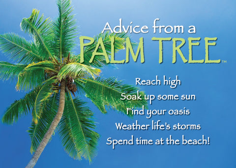 Advice from a Palm Tree Jumbo Magnet