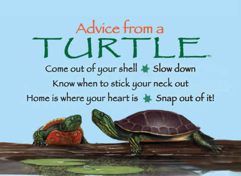 Advice from a Turtle Jumbo Magnet