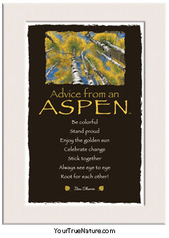 Advice from an Aspen Mini Matted Print