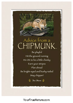 Advice from a Chipmunk Mini Matted Print