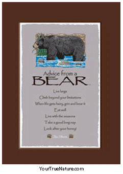 Advice from a Bear Mini Matted Print