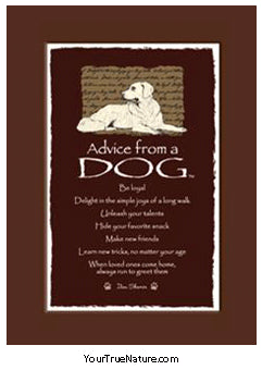 Advice from a Dog Mini Matted Print