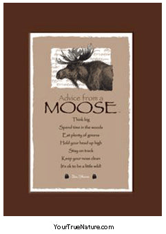 Advice from a Moose Mini Matted Print