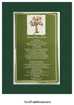 Advice from a Tree Mini Matted Print