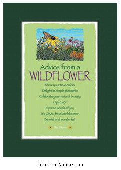 Advice from a Wildflower Mini Matted Print