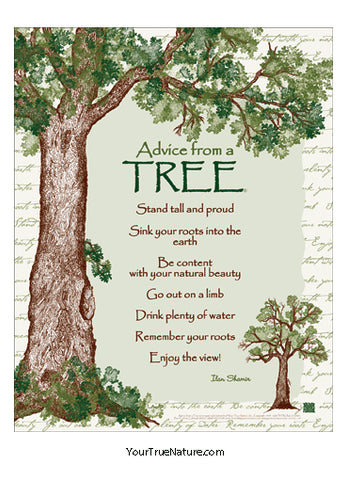 Advice from a Tree Poster