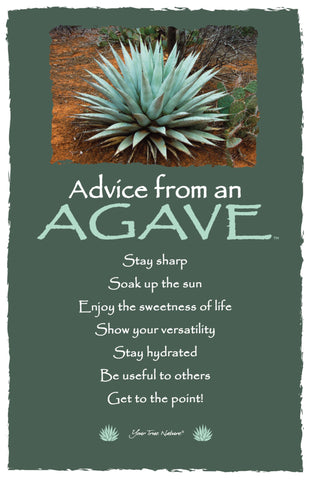 Advice from an Agave - Frameable Art Card