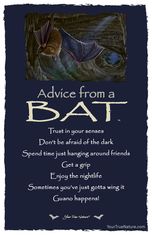 Advice from a Bat Frameable Art Postcard