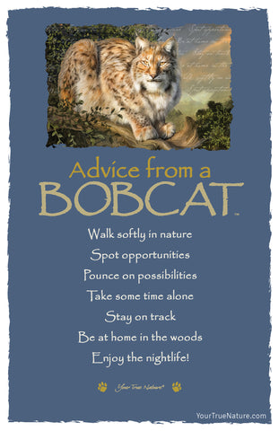 Advice from a Bobcat Frameable Art Postcard