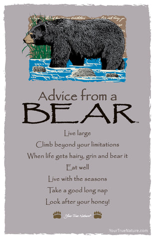 Advice from a Bear Frameable Art Postcard