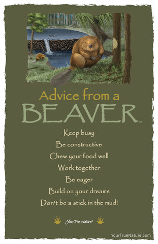 Advice from a Beaver Frameable Art Card