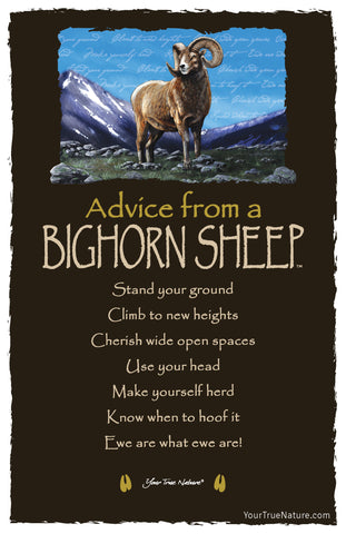 Advice from a Bighorn Sheep Frameable Art Card