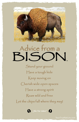 Advice from a Bison Frameable Art Postcard