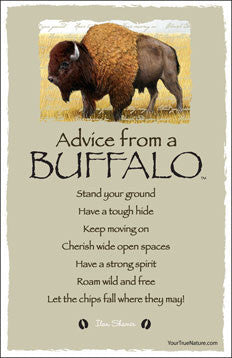 Advice from a Buffalo - Frameable Art Card