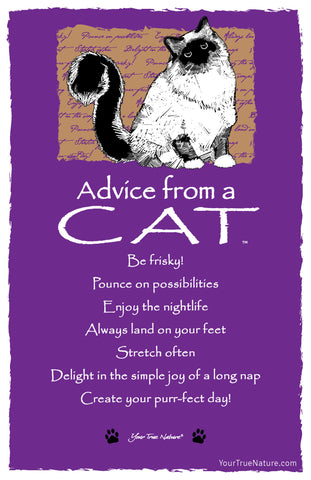 Advice from a Cat Frameable Art Postcard