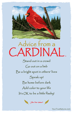 Advice from a Cardinal Frameable Art Postcard