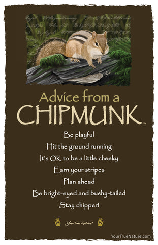 Advice from a Chipmunk Frameable Art Card