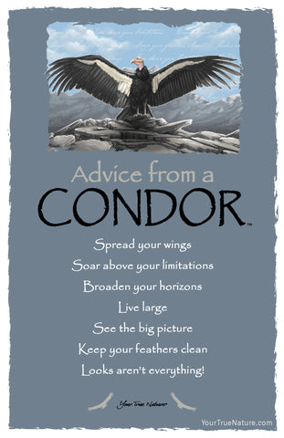 Advice from a Condor Frameable Art Card