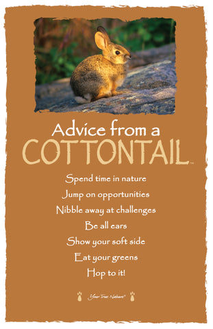 Advice from a Cottontail - Frameable Art Card