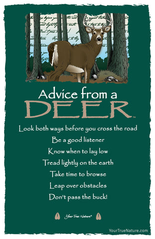 Advice from a Deer Frameable Art Card