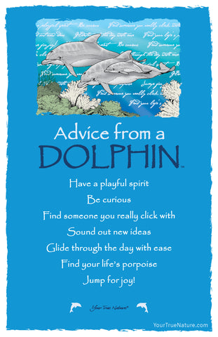 Advice from a Dolphin Frameable Art Card