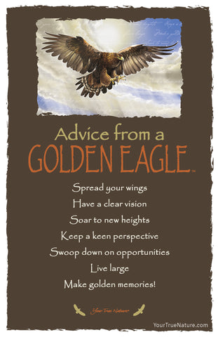 Advice from a Golden Eagle Frameable Art Postcard