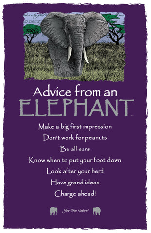 Advice from an Elephant Frameable Art Postcard