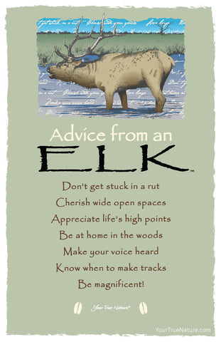 Advice from an Elk Frameable Art Card