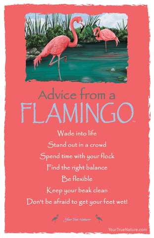 Advice from a Flamingo Frameable Art Postcard
