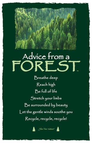 Advice from a Forest Frameable Art Card