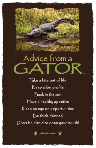 Advice from a Gator - Frameable Art Card