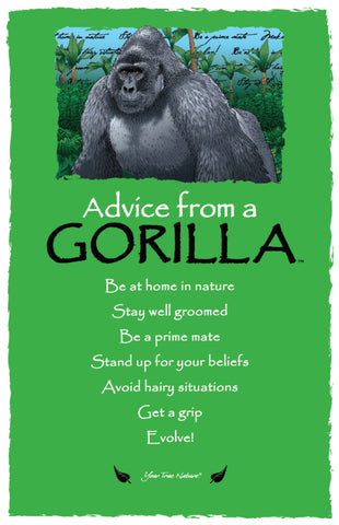 Advice from a Gorilla Frameable Art Postcard