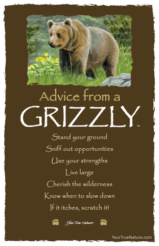 Advice from a Grizzly Frameable Art Postcard