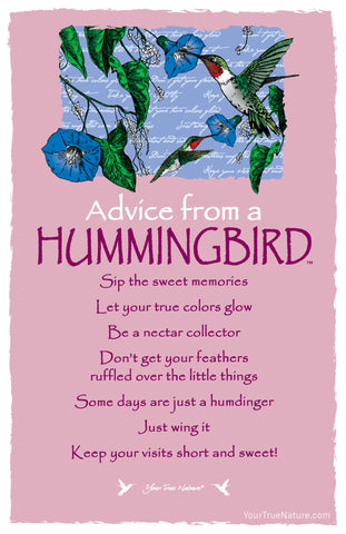 Advice from a Hummingbird Frameable Art Postcard