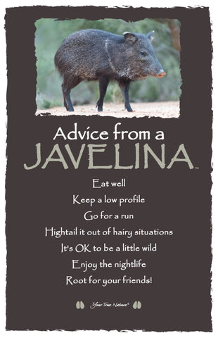 Advice from a Javelina - Frameable Art Card