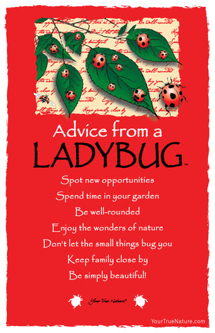Advice from a Ladybug Frameable Art Card