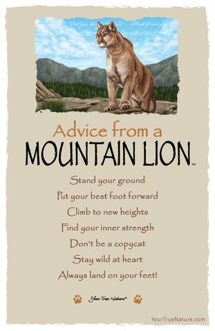 Advice from a Mountain Lion Frameable Art Card
