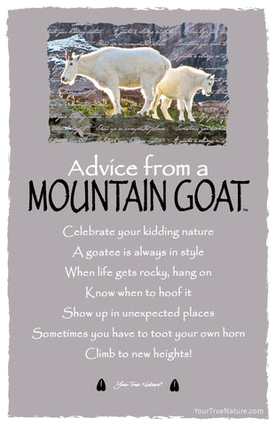 Advice from a Mountain Goat Frameable Art Card