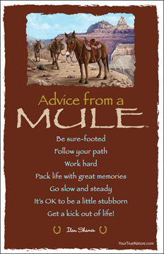 Advice from a Mule - Grand Canyon National Park - Frameable Art Card
