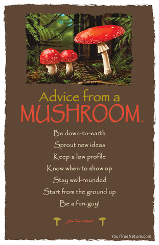 Advice from a Mushroom Frameable Art Card