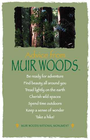 Advice from Muir Woods - Frameable Art Card