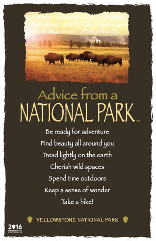 Advice from a National Park- Yellowstone National Park- Frameable Art Card