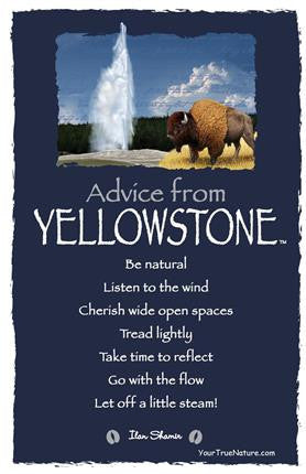 Advice from Yellowstone - Yellowstone National Park - Frameable Art Card