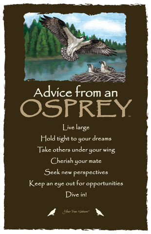 Advice from an Osprey Frameable Art Card